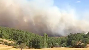 İlçedeki yangın 21 saat sonra kontrol altına alındı